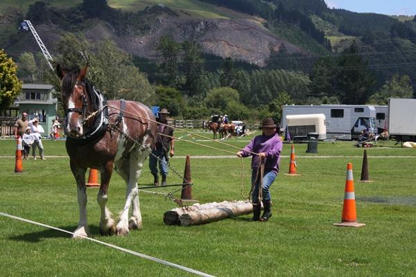 Heavy Horse Event