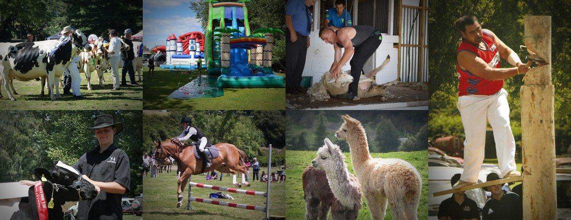 Photos of previous Rotorua Shows